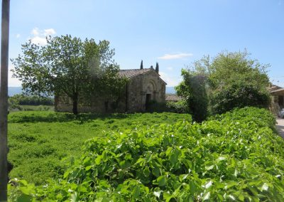 Toscane Sant'Antimo, Omgeving (2)