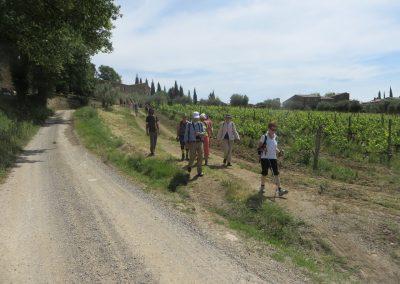 Toscane Sant'Antimo, Omgeving (3)